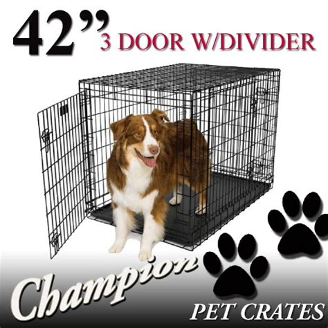 dogs with abs chion dogs 42 folding metal wire cage crate kennel with abs tray black 42 l x