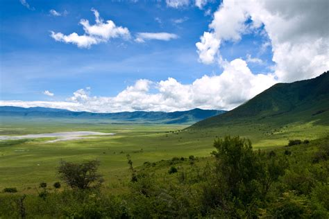ngorongoro crater conservation area pictures africa