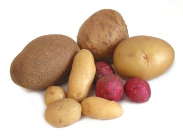 carbohydrates potatoes healthiest potatoes