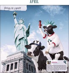 Fil A Cow Calendars 1000 Images About Cow Calendars On Cows