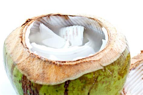 in quale alimento si trova il magnesio acqua di cocco benefici propriet 224 e controindicazioni