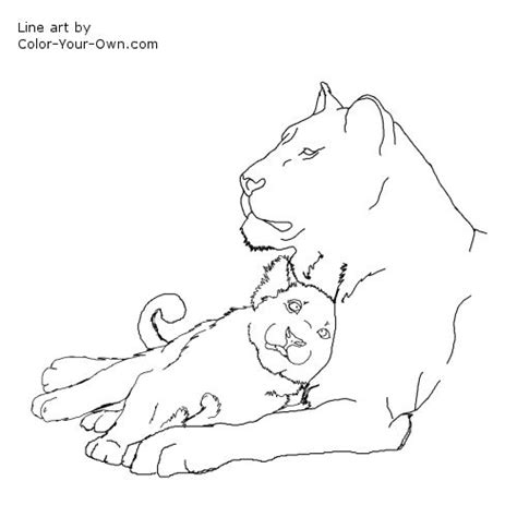 lion cub free colouring pages