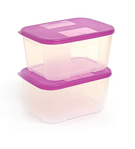 Tupperware Freezermate With tupperware freezermate 2 pcs small container set by