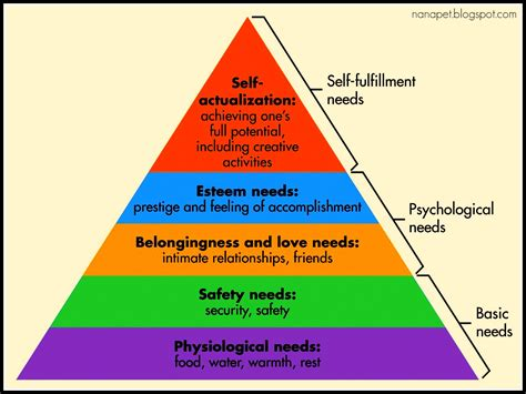 maslow s hierarchy of needs notes ppt video online download