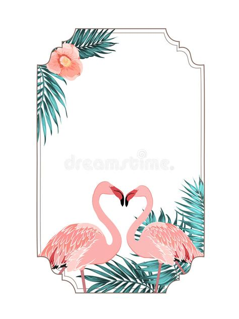 flamingo beak template tropical border frame flamingo birds stock