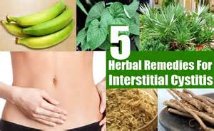 interstitial cystitis herbal remedies treatments and