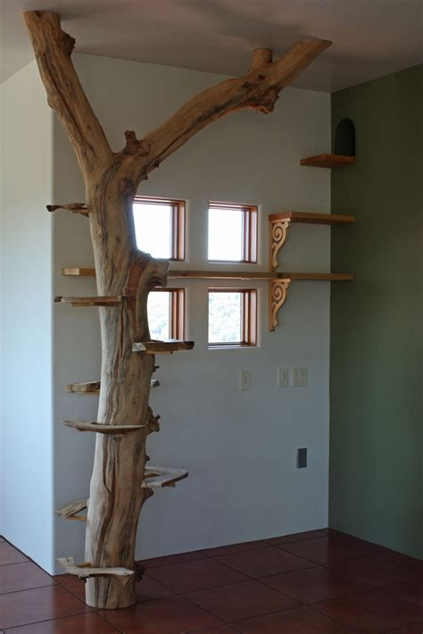 real treehouse cat tree and walkway in sally s studio another local