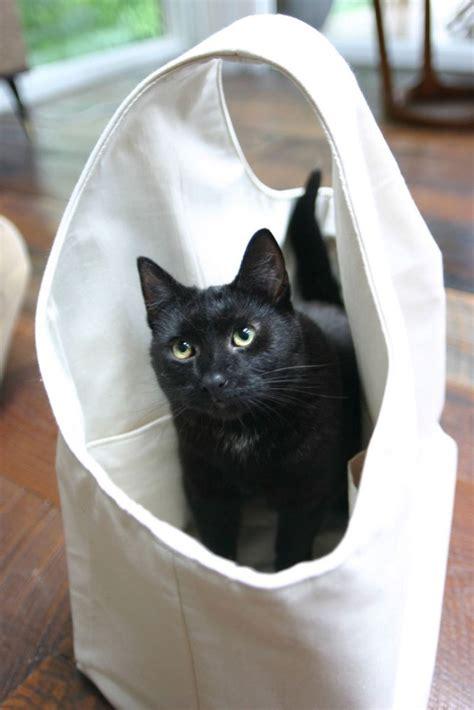 amy butler house tourshe loves cats jenni raincloud