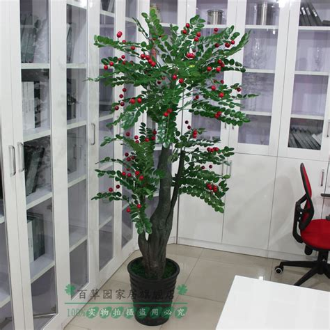 Bonsai Palsu Pohon Palsu Bunga Dekorasi Bunga Pajangan buah beruntung tanaman buatan perancis tanaman bonsai pohon palsu bunga buatan dekorasi di