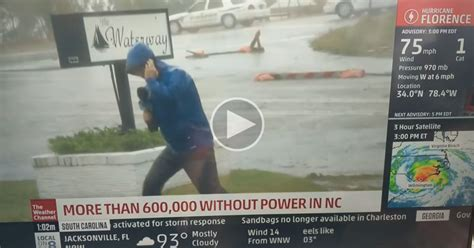 weather channel reporter   dramatic bid  daytime emmy twistedsifter