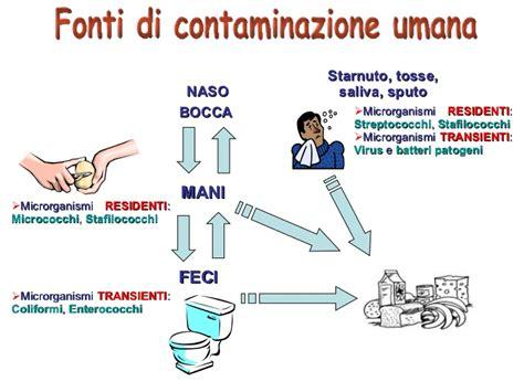 contaminazione alimentare microbiologia degli alimenti