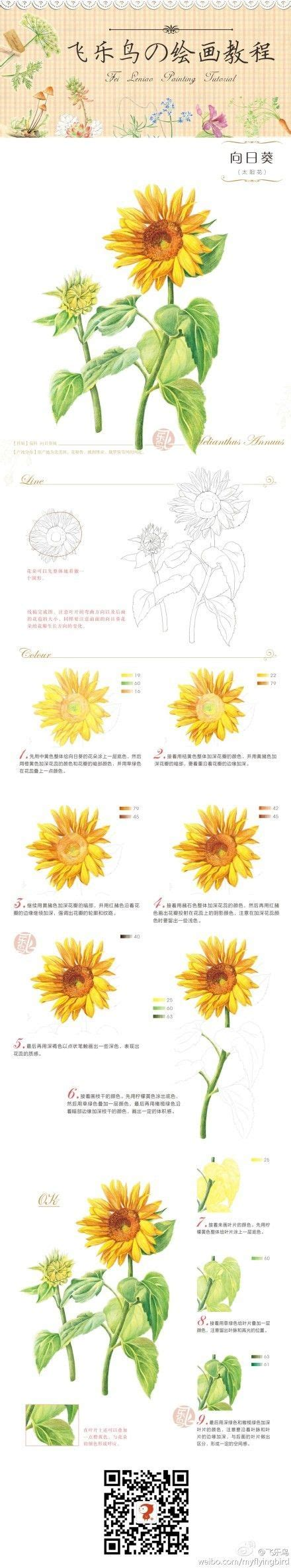watercolor tutorial sunflowers how to draw and paint a sunflower sketch pinterest