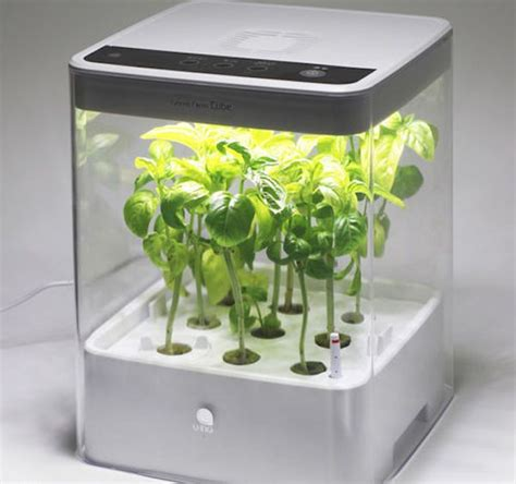 Garden Grow Box by 25 Best Ideas About Hydroponic Grow Kits On