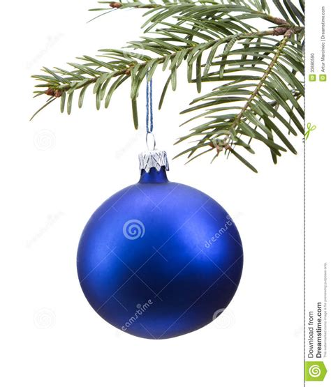 blue christmas bauble on the tree stock photo image