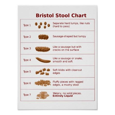 Bristol Stool Scale Poster bristol stool chart scale poster zazzle