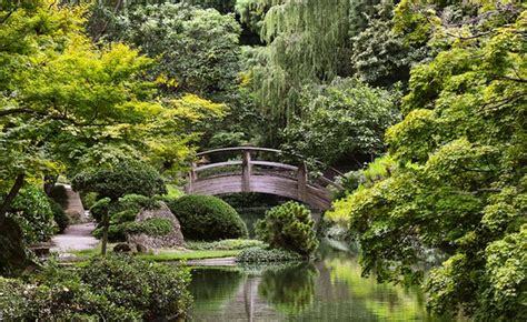 botanic garden fort worth shop across