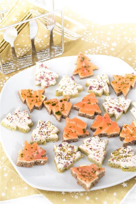 come si cucina il salmone idee per antipasti natalizi con il salmone