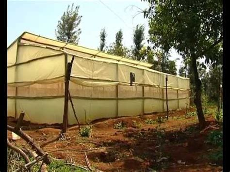 House Plans In Kenya low cost greenhouse farming youtube