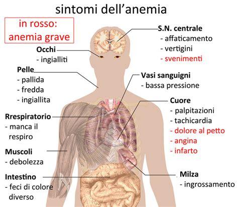 alimentazione per milza ingrossata anemia da carenza di ferro o anemia sideropenica