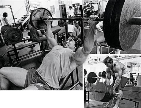 arnold schwarzenegger bench max arnold a to z superset man