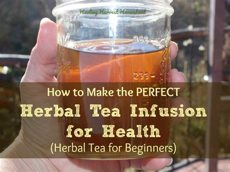 8 Tea Infusions You To Try by It S Cider Time A Classic Tonic Herbal Remedy Home