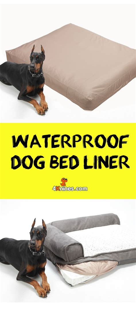 expensive dog beds 1000 ideas about durable dog beds on pinterest dog beds