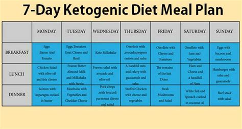 14 days keto meal plan easy guide for rapid weight loss books 7 day ketogenic plan to fight diabetes obesity cancer