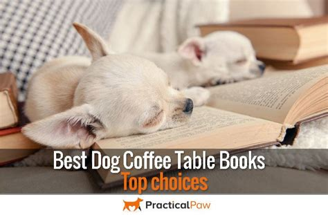 Dogs Coffee Table Book Practical Paw The Toolkit