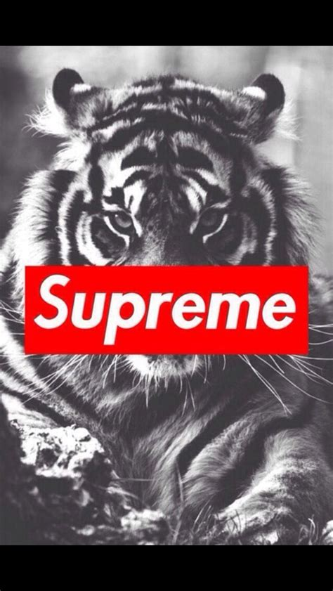 wallpaper iphone supreme supreme iphone wallpapers pinterest