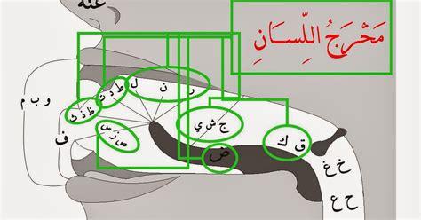 software design huruf belajar tajwid quot makhorijul huruf salman al farisi