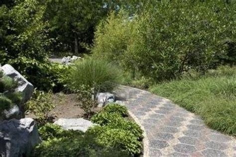 camminamenti per giardino camminamenti giardino giardino fai da te