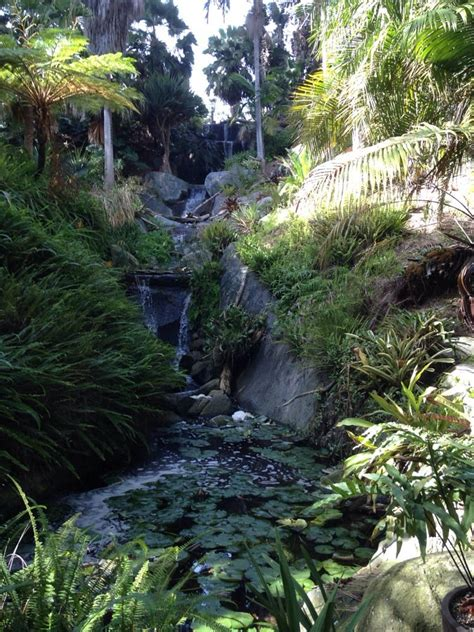 Botanical Gardens Encinitas Ca Photos For San Diego Botanic Garden Yelp