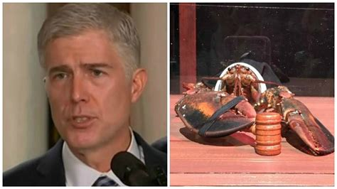Twitter Giveaway Picker - john oliver twitter contest pick a lobster to play supreme court nom neil gorsuch