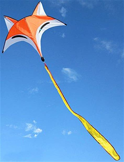 Kite Flying Essay by 537 Best Images About Go Fly A Kite On Kites Image Search And Kite