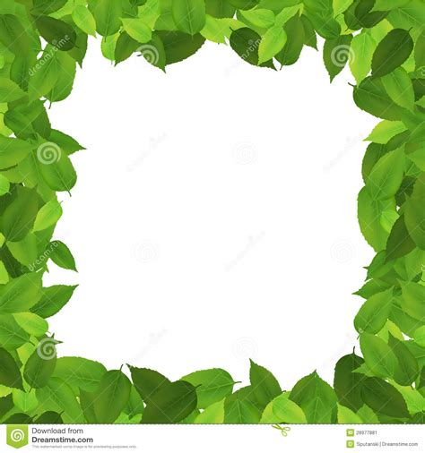 Leaf Border Background Powerpoint Backgrounds For Free Leaf Border Template