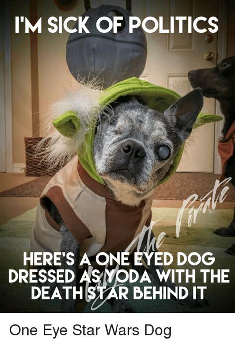 Sick Puppy Meme - i m sick of politics here s a one eyed dog dressed da with