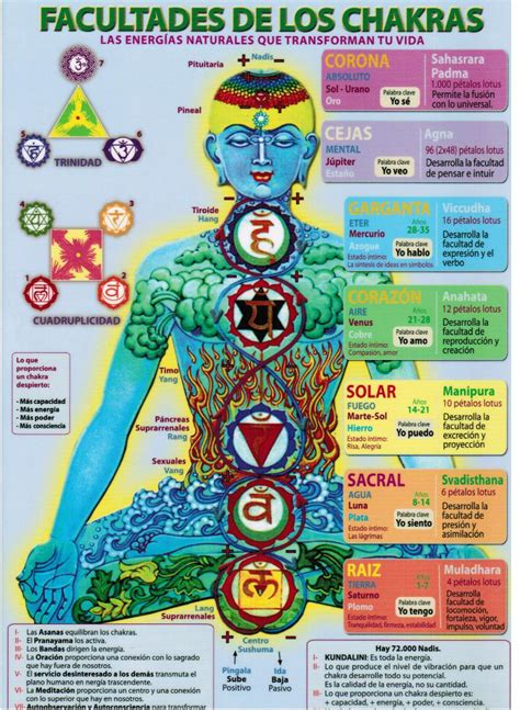 los chakras  son  sus funciones terapias vigo