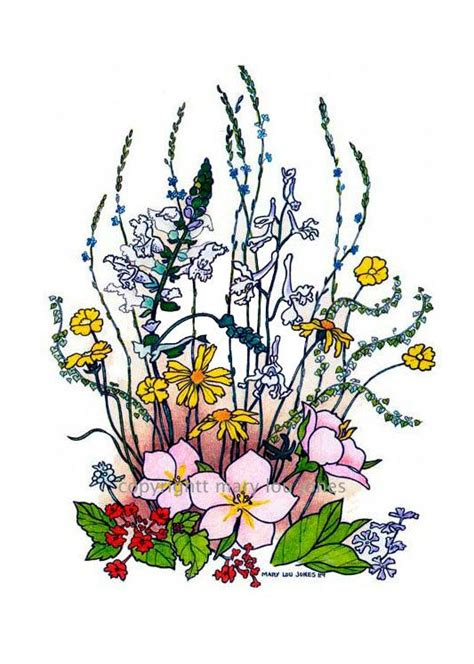 wildflowers spring flower print texas wildflowers hill