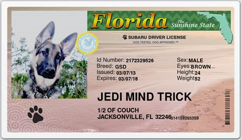 Blog Archives Strategybertyl Florida Drivers License Template