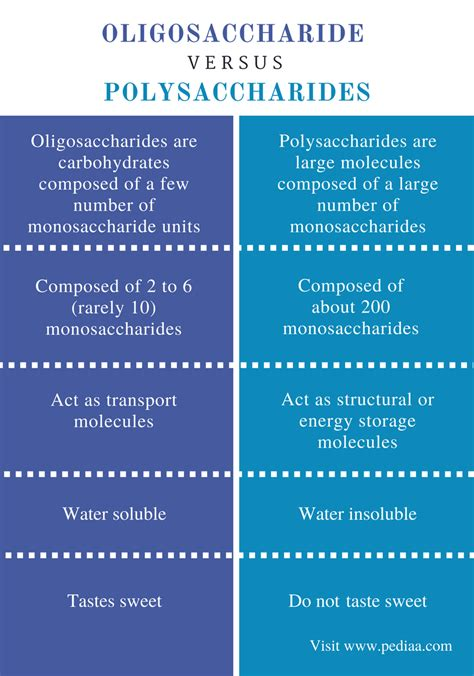 carbohydrates key terms difference between oligosaccharides and polysaccharides