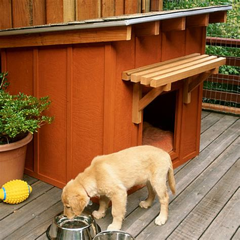 diy dog house for large dogs how to build a dog house sunset