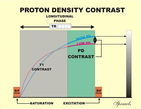 Density Of Proton by Magnetic Resonance Imaging