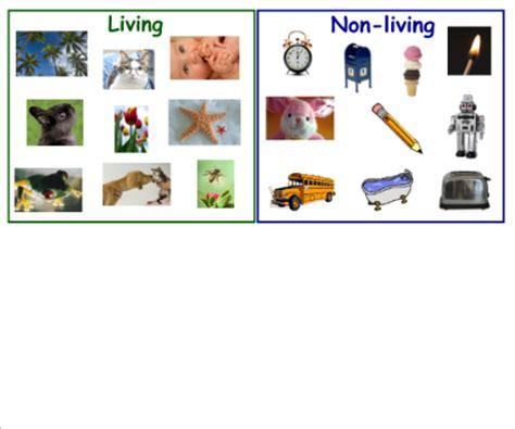 living things non living things smart exchange usa living vs non living
