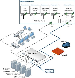 network physical diagram netfort software installation guides