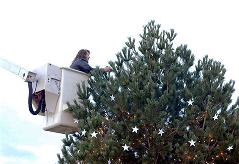 Heavily Takes To The Skies by Entranceway Tree Decorated In Honor Of College S