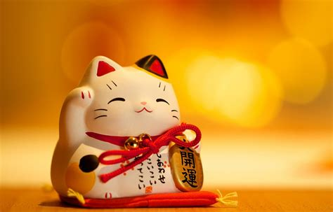 the origin of the maneki neko all about japan