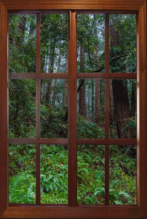 window wall murals wall mural window self adhesive big sur window view large