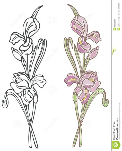 Iris Outline by Purple Iris Stock Photography Image 15903202