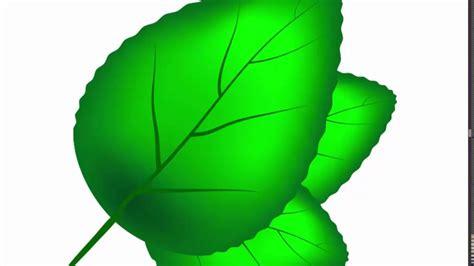illustrator tutorial leaf green leaf adobe illustrator cs6 tutorial quick and