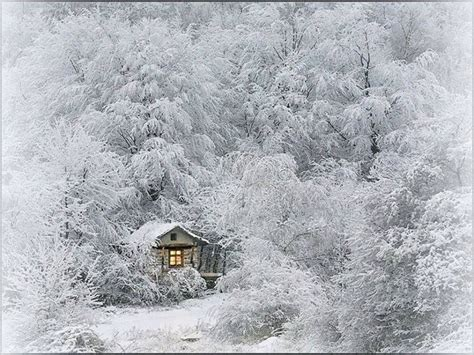 Snowy Cabin In The Woods by Cabin In The Snowy Woods Yule Baby Its Cold Outside
